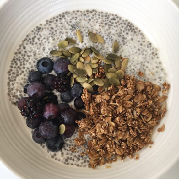 chia pudding snack recipe on www.nutritionbliss.com